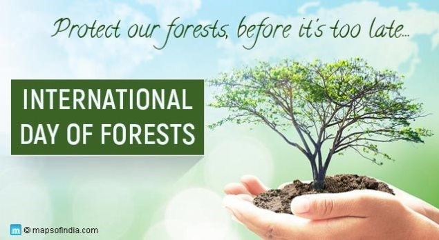 International Day of Forests 2019: Lets Learn to Love Forests