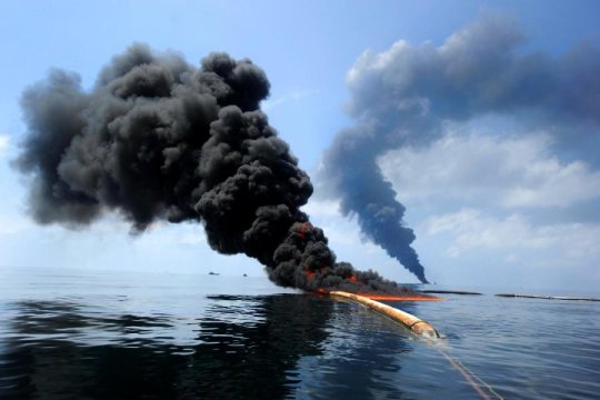 How Oil Pollution Is A Grave Danger to Marine Life and Biodiversity