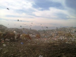 Waste disposal at open areas in India