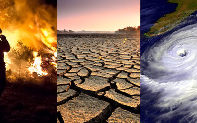 Climate Change Responsible for Erratic Monsoons, Floods, & Droughts in India