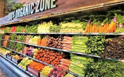 Vegetarian or Vegan Diet is not Always Green