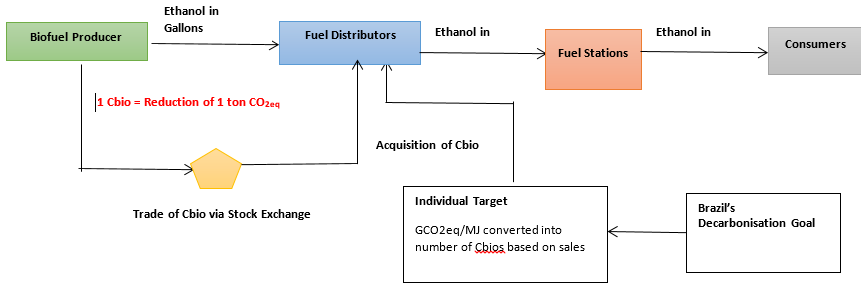 How Brazil leverages ethanol as biofuel: Lessons for India