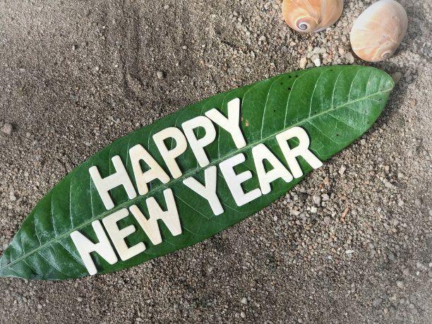 Happy New Year 2019 to all Greenubuntu Readers: Let Us Go Green!