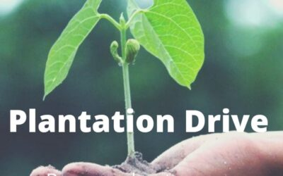 Greenubuntu To Organize Plantation Drive in Collaboration with AIIMS